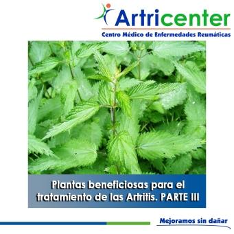 Plantas beneficiosas para el tratamiento de las Artritis. PARTE III-artricenter
